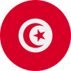 tunisia-global-solutions-service-innovation-group